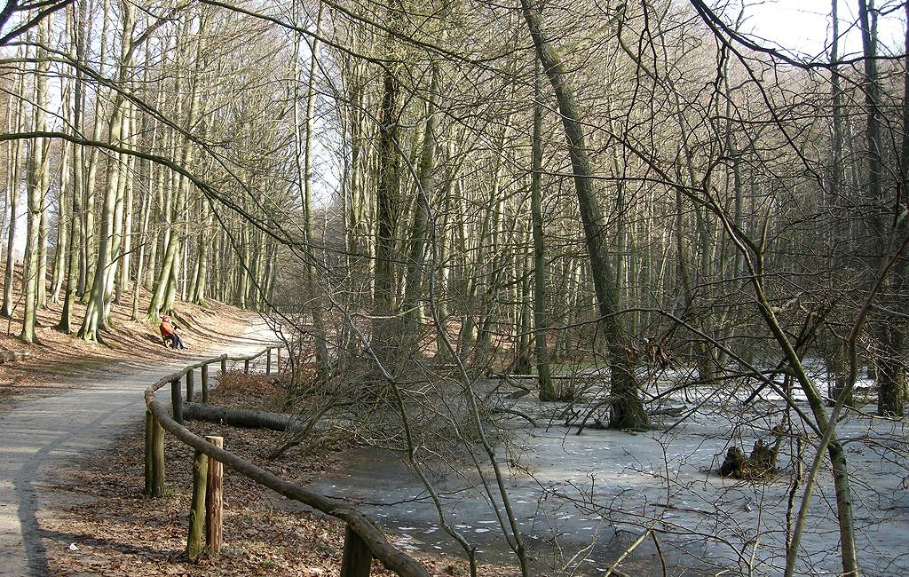 Jasmunder Nationalpark