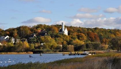 Herbst Bodden Landschaft